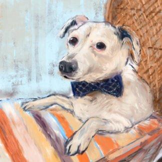 Dog With Bow Tie JV79ZBU3