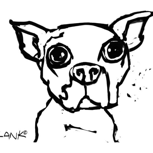 Elvis Sketch v1 E4664649
