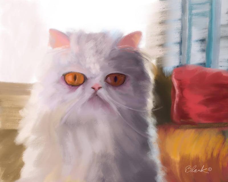 Grumpy Cat Named Tard