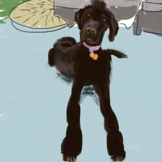 A painting of a tall dark dog sitting on a blue patio.