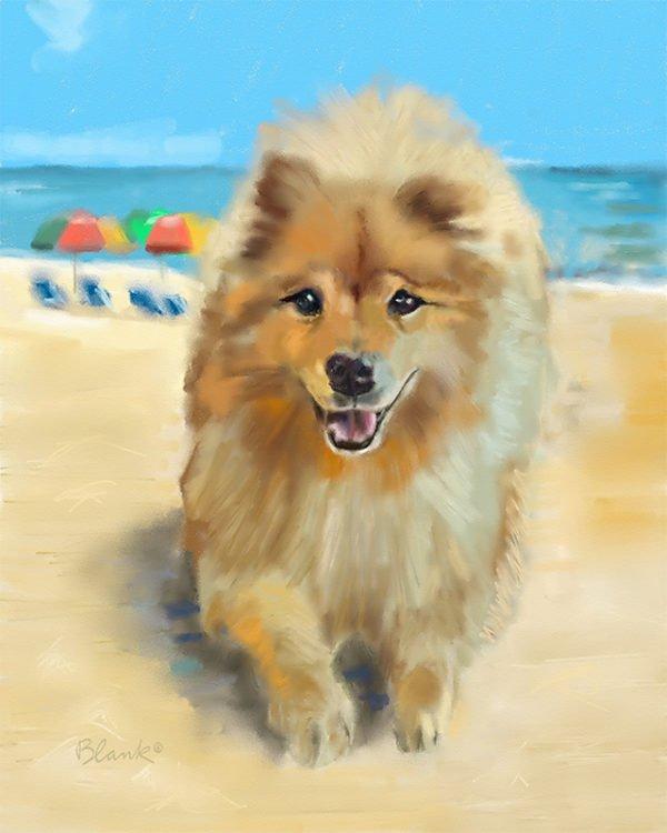Tucker Takes To The Beach